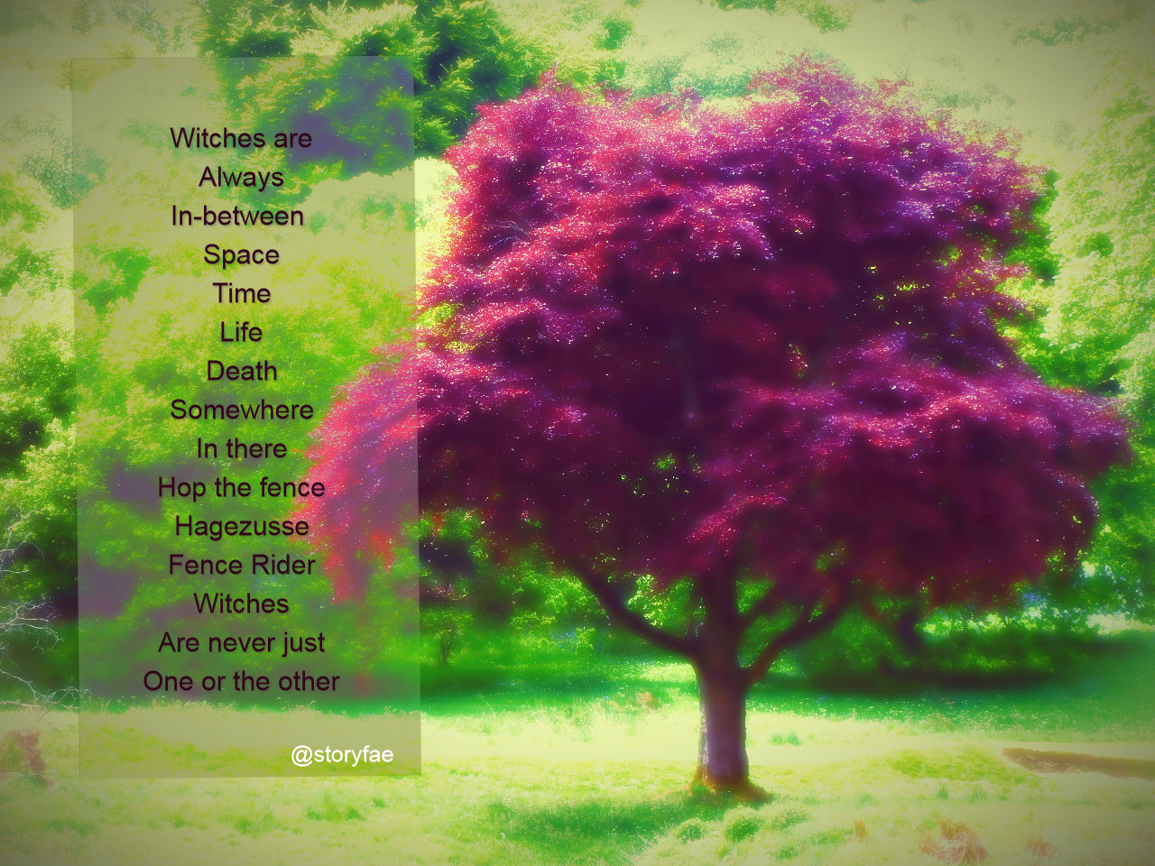 Purple tree in front of green background text overlay reads: Witches are Always In-between  Space Time Life Death Somewhere In there Hop the fence Hagezusse Fence Rider Witches Are never just One or the other